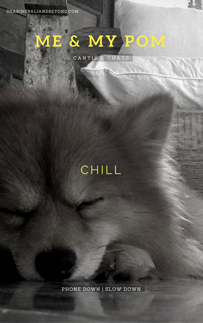 chill-title-cover